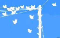 twitter-gathering