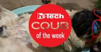 coub of the week ht ua 2 08