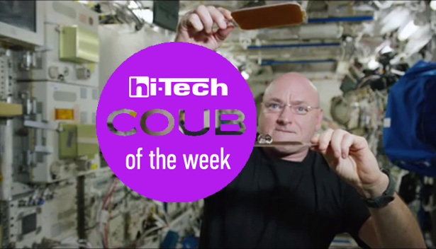 best coubs of the week htua 30-01-2016