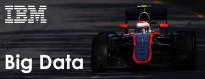 Honda IBM Formula 1