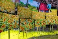 Samsung-TV-IFA2016-5