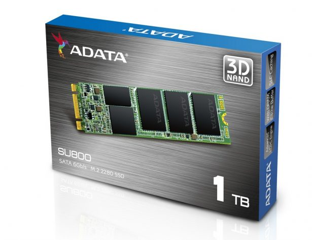 adata-ultimate-su800-2
