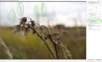 При активации уменьшения паразитной засветки объекты в зоне нерезкости начинают двоиться