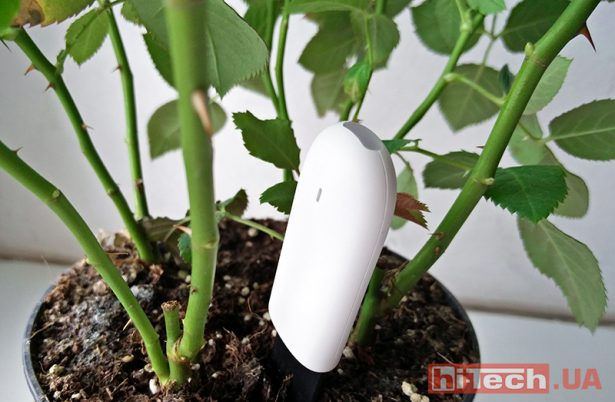 xiaomi-smart-flower-and-plant-monitor-02