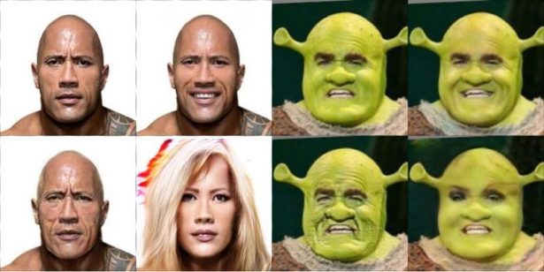 the_rock_and_shrek