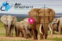 air-shepherd