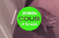 best coub of the week 22-07-17 ht-ua