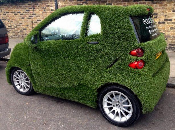 samrt green grass