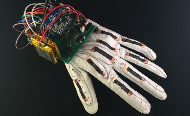 language-glove-1