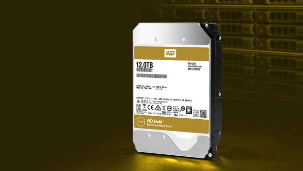 WD Gold 12 TB WD121KRYZ