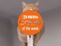 coub of the week ht-ua 23-09-17