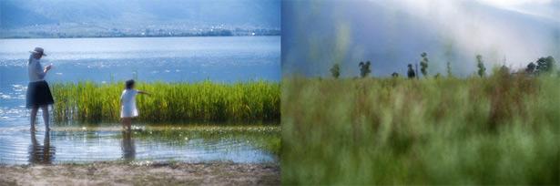 Примеры снимков, полученных с объективом Thambar-M 90 mm f/2.2