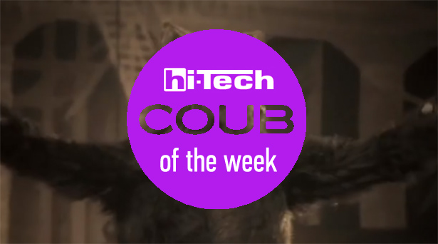 coub of the week 11-11-17 ht-ua
