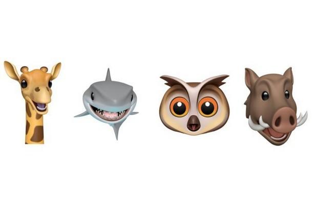 жираф, акула, кабан и сова iOS 12.2