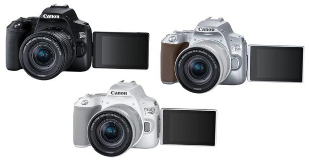 Серебристая, белая и черная камеры Canon EOS 250D