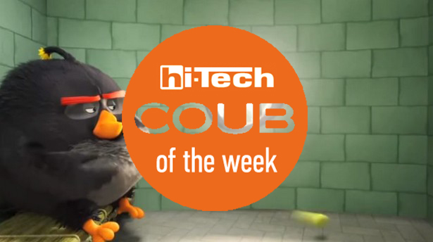 coub of the week