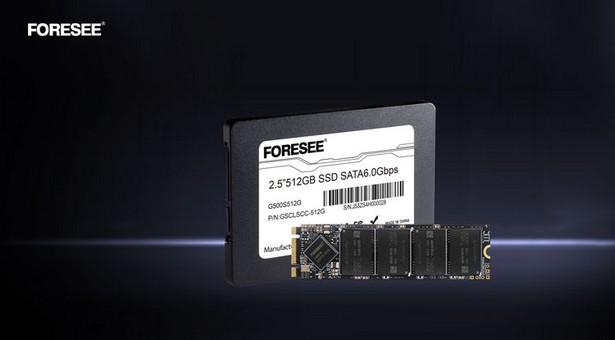 SSD Longsys G500