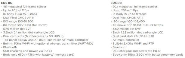 Основные характеристики и отличия Canon EOS R5 и Canon EOS R6