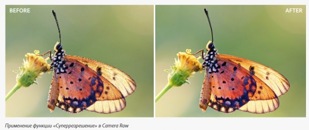 Adobe Camera Raw 13.2 с функцией Super Resolution