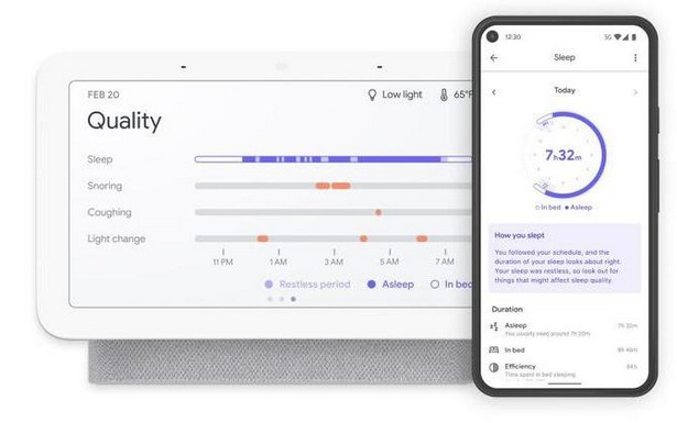 GoogleNest Hub