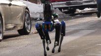 Boston Dynamics police