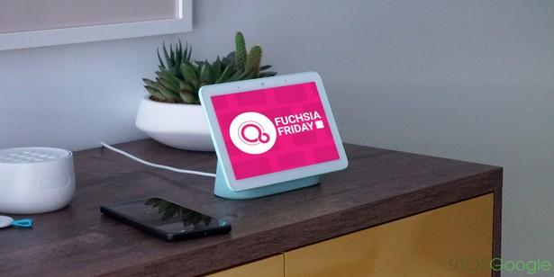 Fuchsia OS nest hub